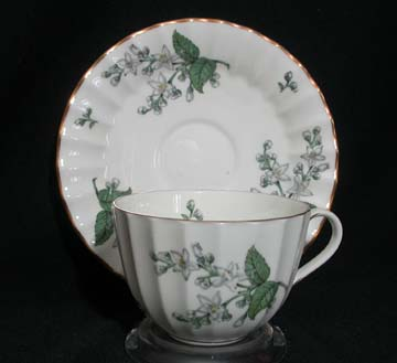 Royal Worcester Valencia  Cup & Saucer